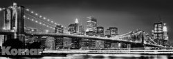 Brooklyn_Bridge_4e9c2a29e2e95.jpg